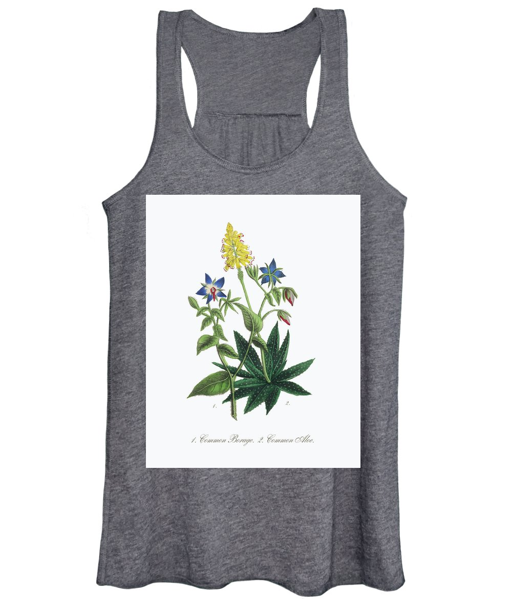 Borage Women's Tank Top featuring the painting Victorian Botanical Illustration Of Borage And Aloe by Peacock Graphics