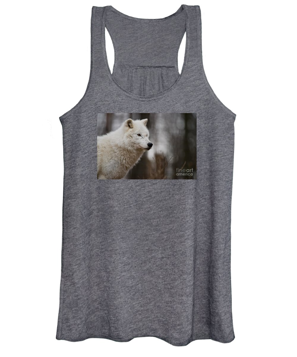 Arctic Wolf Women's Tank Top featuring the photograph Arctic Wolf Pictures 1242 by World Wildlife Photography