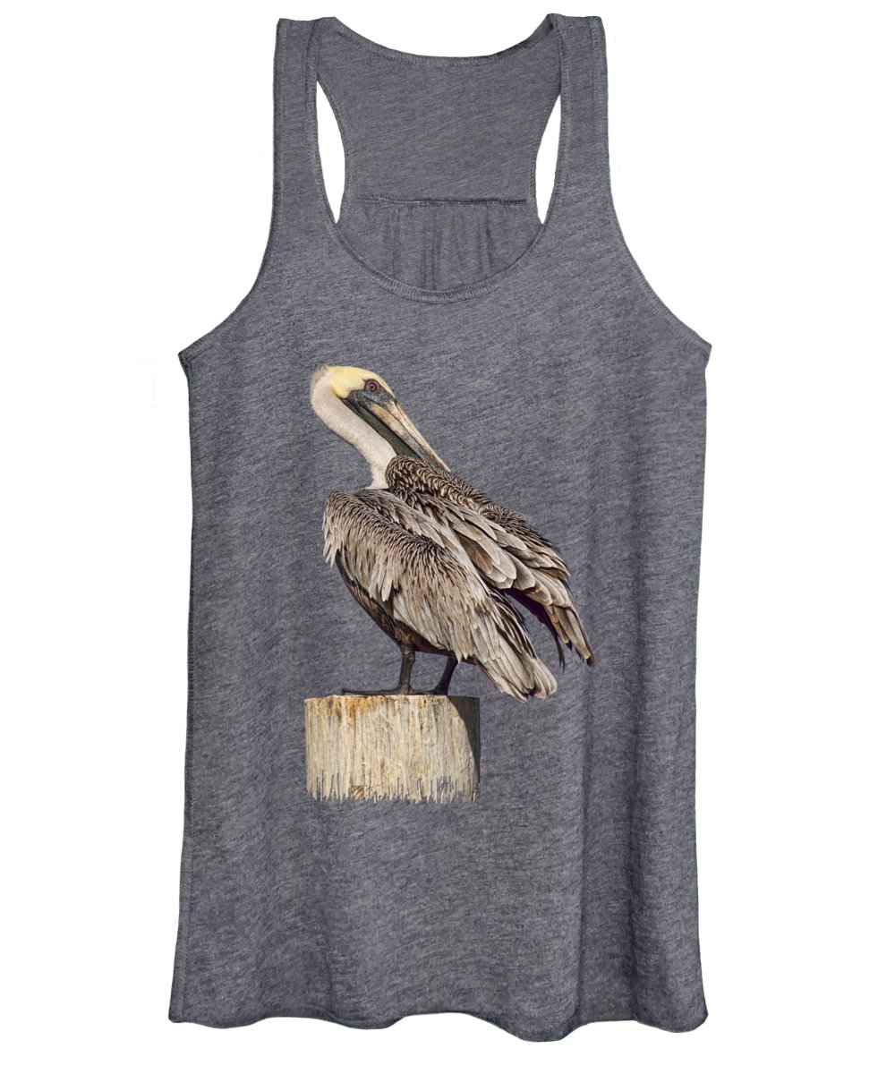 Brown Pelican Women's Tank Top featuring the photograph Brown Pelican - Preening - Transparent by Nikolyn McDonald