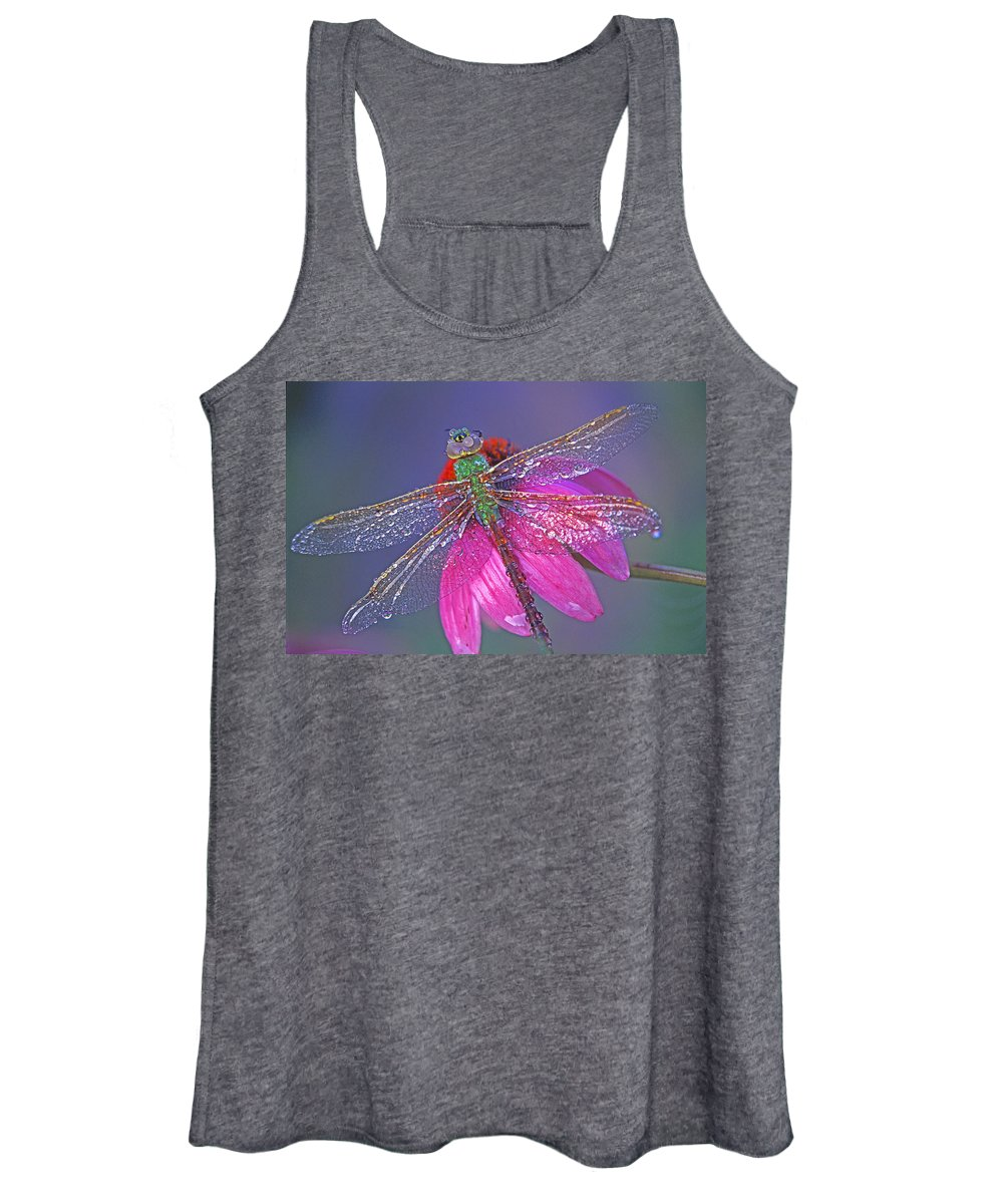Dew Covered Dragonfly Rests On Purple Cone Flower Women's Tank Top featuring the photograph Dreaming Dragon by Bill Morgenstern
