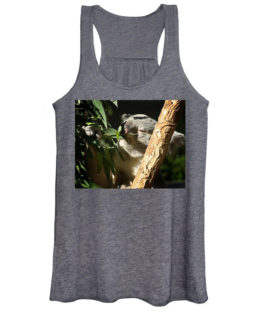 Zoo Women's Tank Top featuring the photograph Koala Bear 3 by Anthony Jones