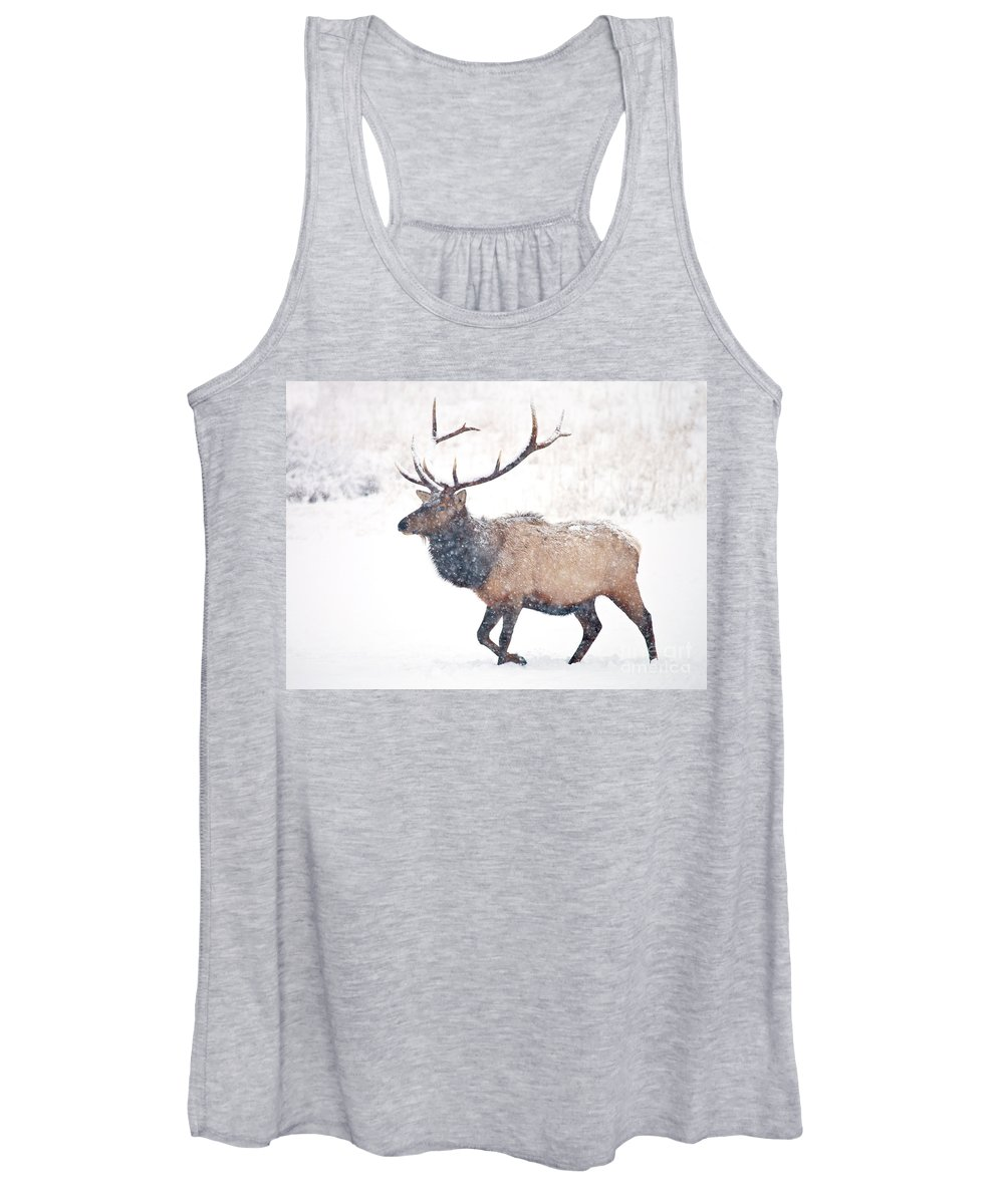 Elk Women's Tank Top featuring the photograph Winter Bull by Mike Dawson
