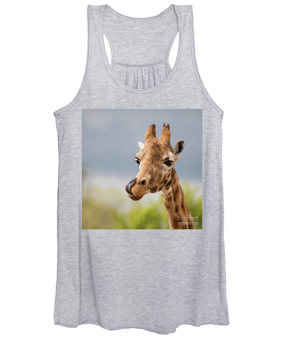 Giraffe Women's Tank Top featuring the photograph Comical Giraffe With His Tongue Out. by Jane Rix