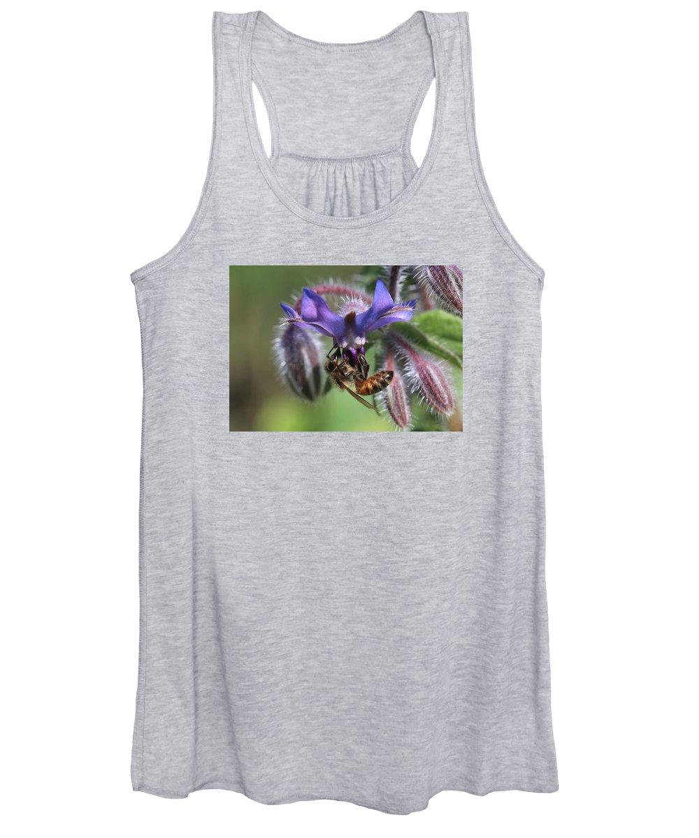 Honey Bee Women's Tank Top featuring the photograph Honey Bee On Borage by Lucinda VanVleck