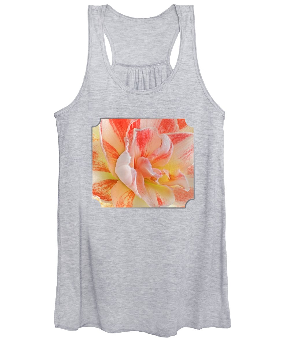 Pink Amaryllis Women's Tank Top featuring the photograph Timeless Beauty by Gill Billington