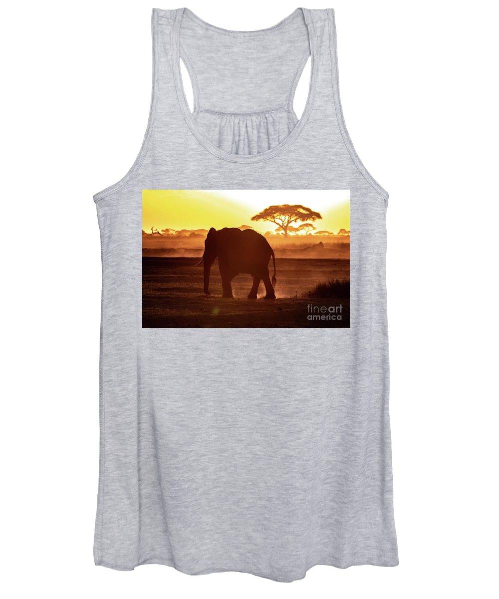 Sunset Women's Tank Top featuring the photograph Elephant Walking Through Amboseli At Sunset by Jane Rix