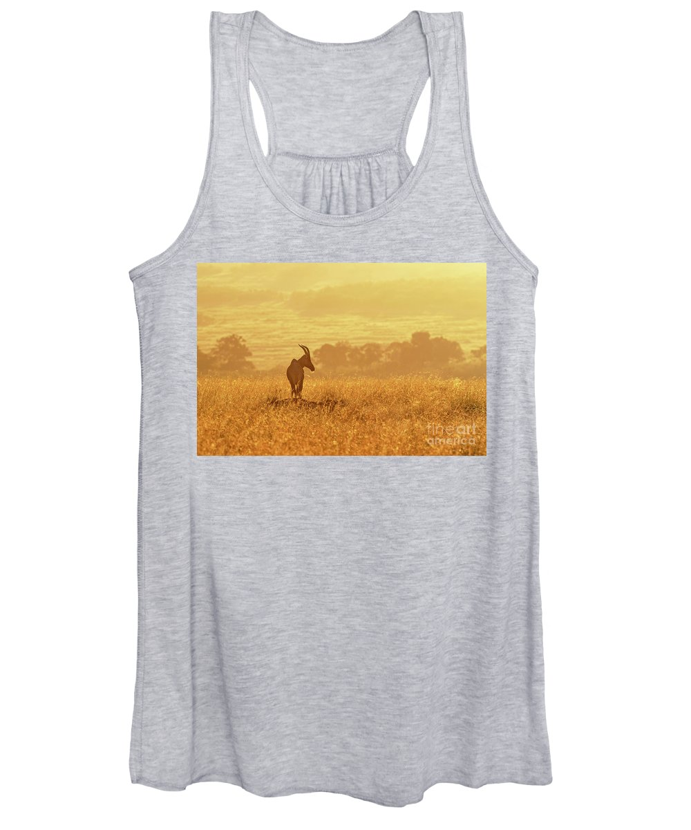 Safari Women's Tank Top featuring the photograph Topi In Early Morning Sunlight by Jane Rix