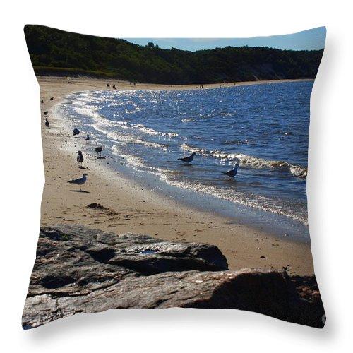 Along The Shore Throw Pillow featuring the photograph Along The Shore by Dora Sofia Caputo Photographic Design and Fine Art