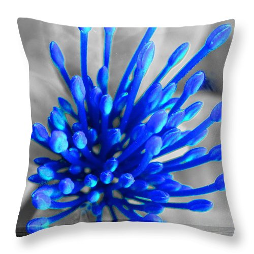Blue Throw Pillow featuring the photograph Blue Ripple by Debbie Levene