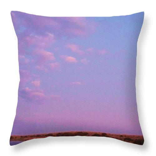 Cape May Point Throw Pillow featuring the photograph Cape May Point Lake And Clouds by Eric Schiabor