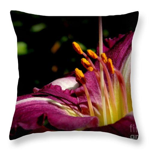 Flowers Throw Pillow featuring the photograph Day Lillies by Rabiah Seminole
