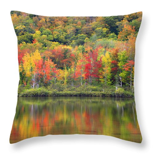 Foliage Throw Pillow featuring the photograph Echo Lake Fall Reflections by John Vose