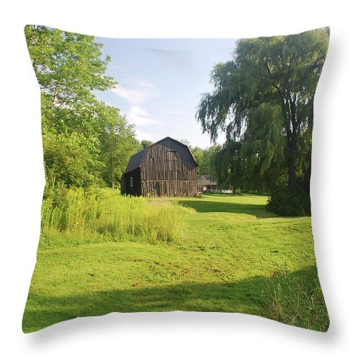 Barn Throw Pillow featuring the photograph Evergreen Trails 7523 by Guy Whiteley