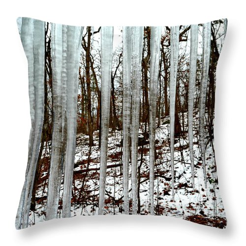 Landscape Throw Pillow featuring the photograph Frozen In Time by Peggy Franz