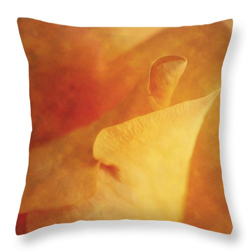 Yellow Rose Throw Pillow featuring the photograph Impression Of A Yellow Rose by John Vose