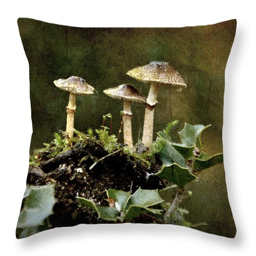 Mushrooms Throw Pillow featuring the photograph Little Mushrooms by RicardMN Photography