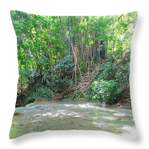Mayfield Falls Throw Pillow featuring the photograph Mayfield Falls Jamaica 11 by Debbie Levene