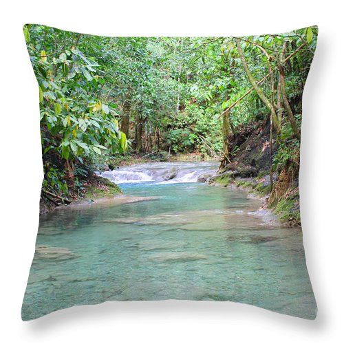 Mayfield Falls Throw Pillow featuring the photograph Mayfield Falls Jamaica 6 by Debbie Levene