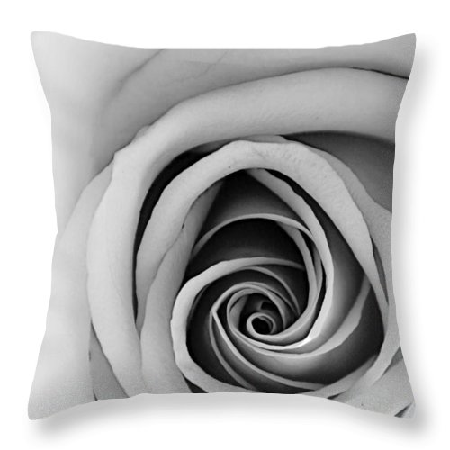 Rose Throw Pillow featuring the photograph Mesmerizing by Tina Meador