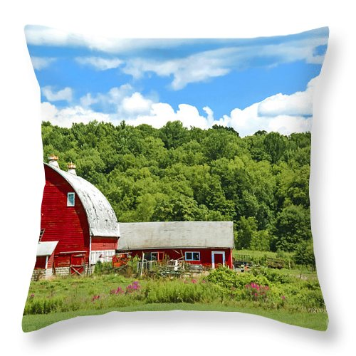 Red Barn Throw Pillow featuring the photograph Red Farmstead In Summer by Regina Geoghan