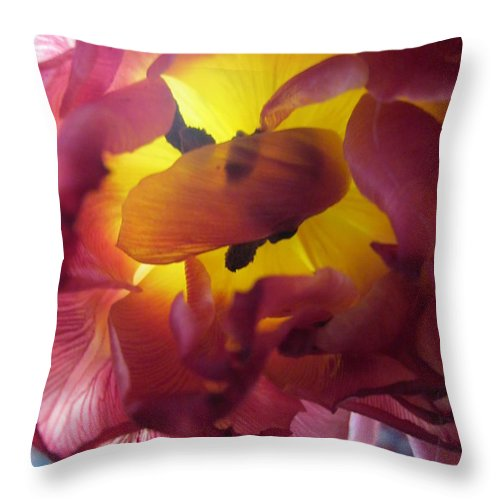 Flowers Throw Pillow featuring the photograph Rip by Rosita Larsson