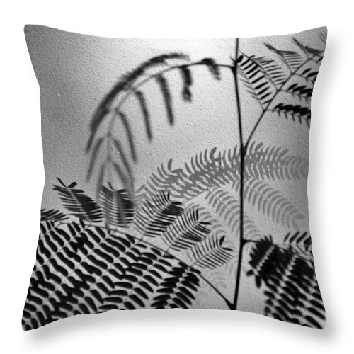 Michelle Meenawong Throw Pillow featuring the photograph Shadows by Michelle Meenawong