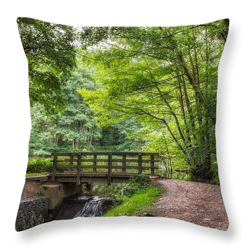 Cannock Chase Throw Pillow featuring the photograph The Bridge Birches Valley Cannock Chase by Ann Garrett