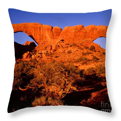 Arches National Park Throw Pillow featuring the photograph The Windows Sunrise by Tracy Knauer
