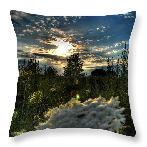 Buffalo Throw Pillow featuring the photograph 003 Life Is Beautiful by Michael Frank Jr