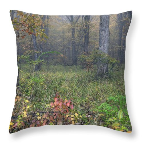 Starved Throw Pillow featuring the photograph 0134 Misty Meadow by Steve Sturgill