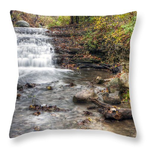 Water Throw Pillow featuring the photograph 0278 South Elgin Waterfall by Steve Sturgill