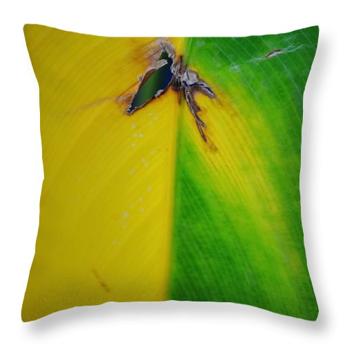 Michelle Meenawong Throw Pillow featuring the photograph Hole by Michelle Meenawong
