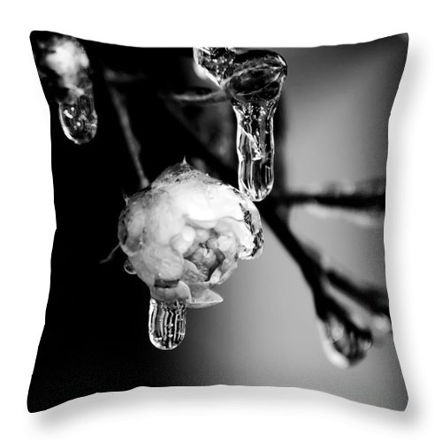 Abstract Throw Pillow featuring the photograph Rose And Frozen Leafs In Cold Winter Tones by Alex Grichenko