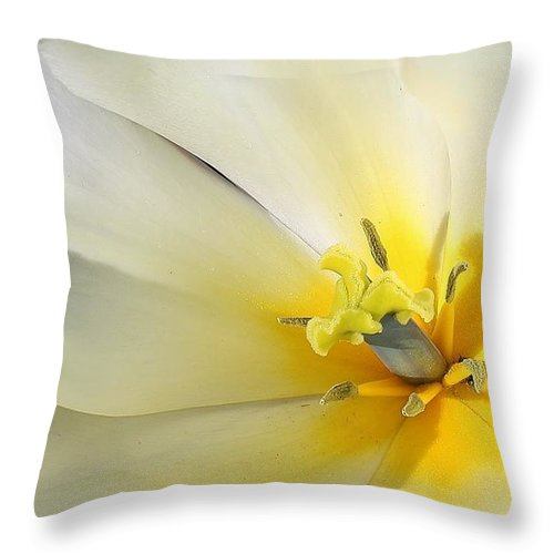 Flora Throw Pillow featuring the photograph A Touch Of Elegance by Bruce Bley