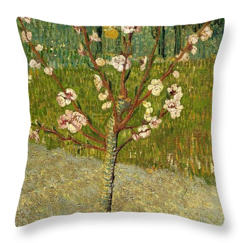 1888 Throw Pillow featuring the painting Almond Tree In Blossom by Vincent van Gogh