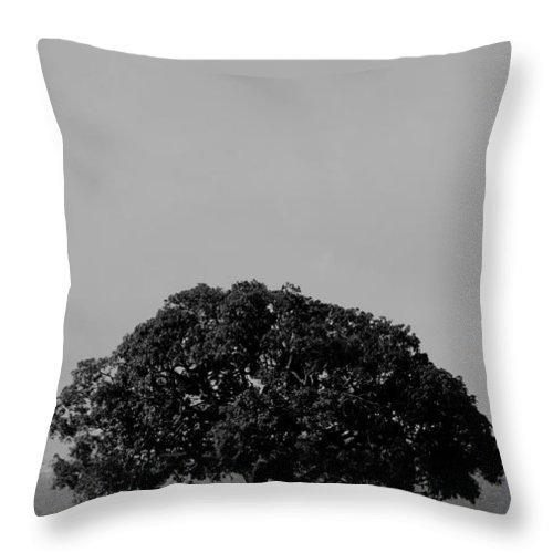 Art Throw Pillow featuring the photograph Alone by Dattaram Gawade