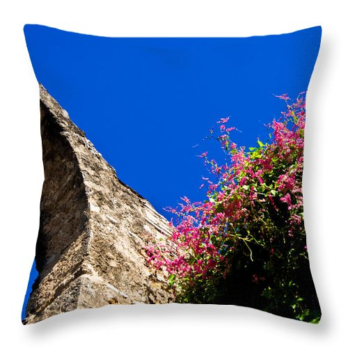 Arches Throw Pillow featuring the photograph Arches by Norchel Maye Camacho