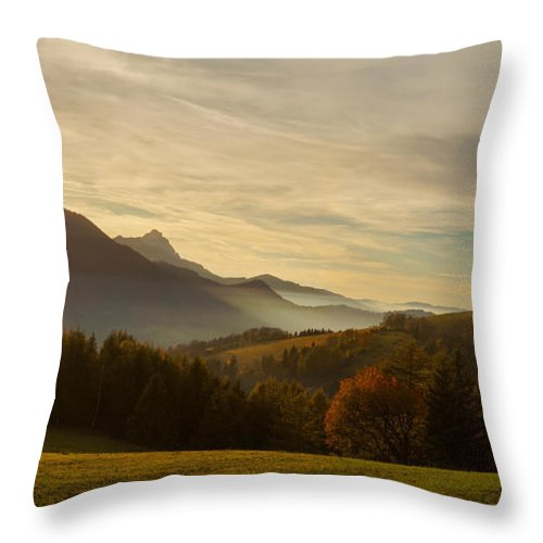 Mist Throw Pillow featuring the photograph Autumn by Silvio Schoisswohl