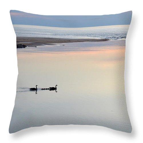 Ludington Throw Pillow featuring the photograph Beauty by Linda Kerkau