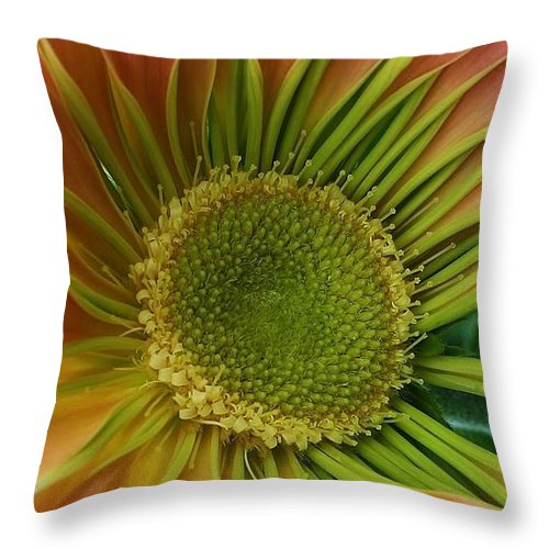 Flora Throw Pillow featuring the photograph Beauty Within by Bruce Bley