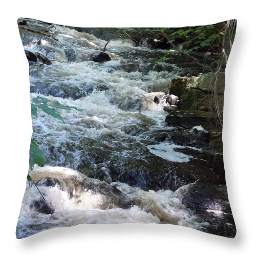 Beaver Brook Throw Pillow featuring the photograph Beaver Brook by Catherine Gagne
