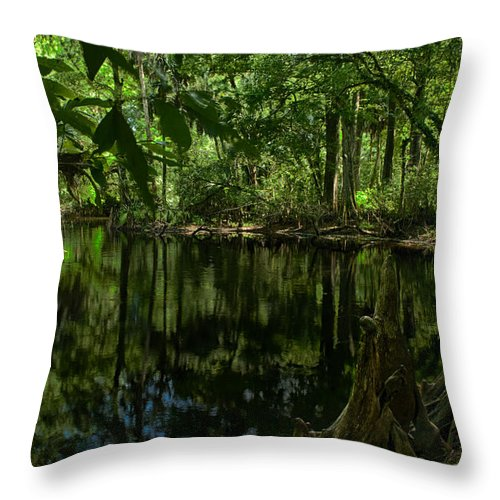 Florida Trail Throw Pillow featuring the photograph Bend In The River by Robert Swinson