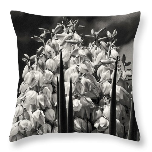James River Road Mason Texas Yucca Bloom Leaf Leaves Plant Plants Yuccas Blooms Wildflowers Wildflower Flower Flowers Black And White Sepia Spring Throw Pillow featuring the photograph Blooms Within A Bloom 3 by Bob Phillips