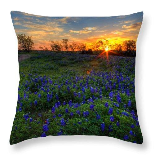 Texas Bluebonnets Throw Pillow featuring the photograph Bluebonnets by Mark Alder