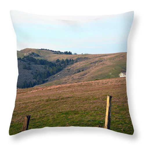 Throw Pillow featuring the photograph Bodega Hills by Brent Dolliver