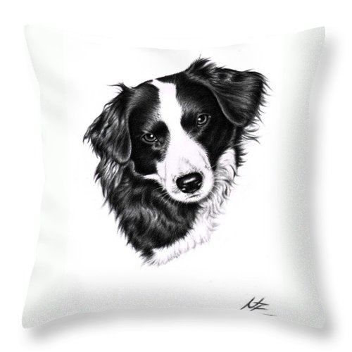 Dog Throw Pillow featuring the drawing Border Collie by Nicole Zeug
