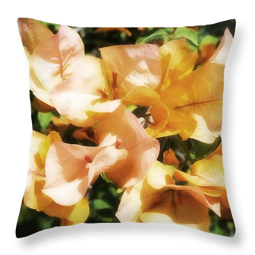 Bougainvillea Throw Pillow featuring the photograph Bougainvillea by Hugh Smith