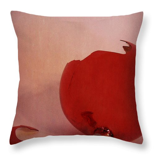 Broke Throw Pillow featuring the photograph Broken Red Ornament by Birgit Tyrrell