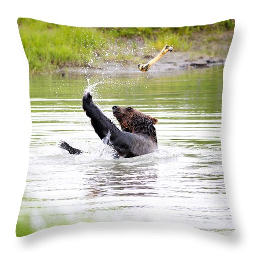 Animal Throw Pillow featuring the photograph Brown Bear Playing With A Bone by Paul Fell
