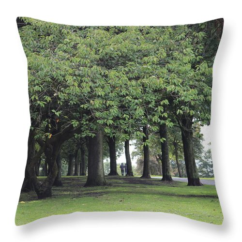 Throw Pillow featuring the photograph Buile Hill Park by Michael A Albouy
